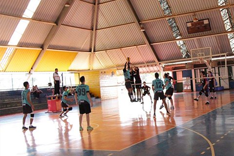 Background Voleibol